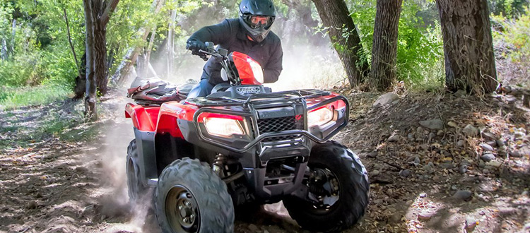 atvs-at-harvard-auto-sales